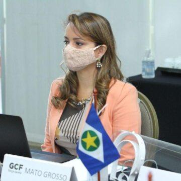 Mato Grosso lidera com mais oito estados ações contra desmatamento ilegal