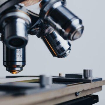 Alunas da rede pública do MT são finalistas na Feira de Jovens Cientistas