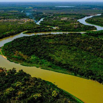 Estados e ministério se unem para combater incêndios no Pantanal