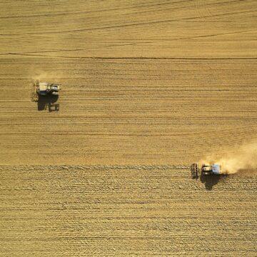 Artigo: O agronegócio está pronto para a próxima etapa de evolução por meio de analytics